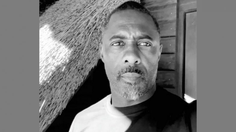 Idris Elba To Voice Knuckles in the Upcoming Film 'Sonic the Hedgehog 2'