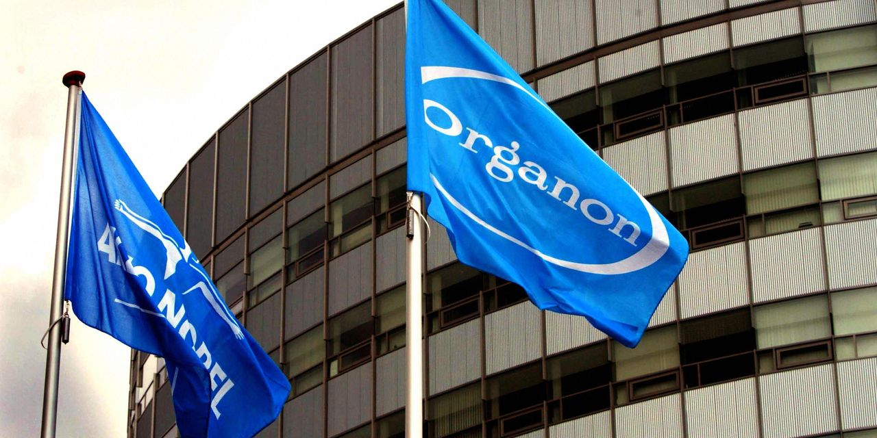 Merck Spinoff Organon Is Cheap and It Just Set a 3.7% Dividend Yield