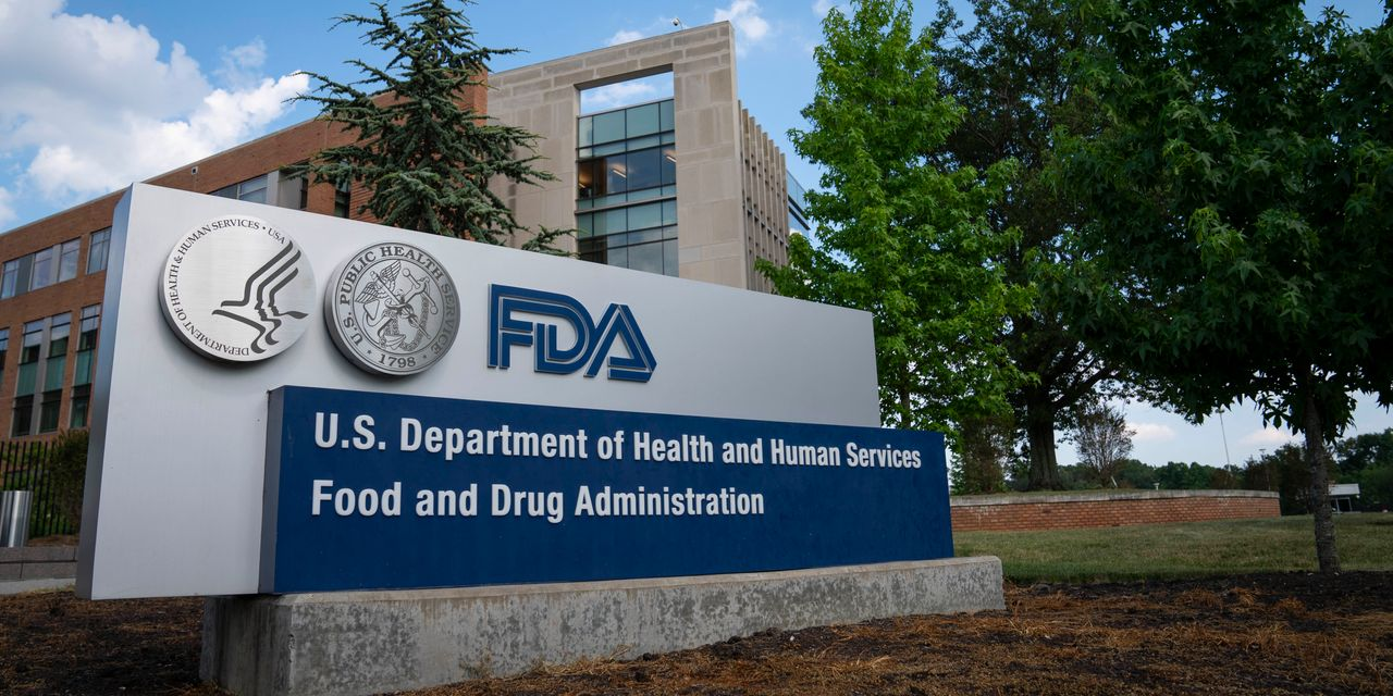 The FDA Rejects FibroGen Drug. The Damage to the Stock Is Already Done.